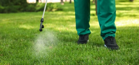 Mosquito and Lawn Pest Prevention Services in the Orlando, FL