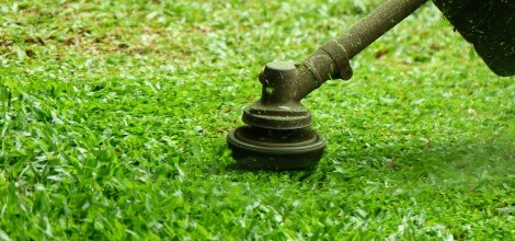Professional Lawn Mowing Services in Queen Anne's County, MD