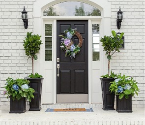 Professional Front Lawn Landscaping Company in Orlando Florida